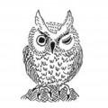 杉見徳明著「ふくろう版画雑記帖」「同交遊帖」より本人直筆イラストなどを引用。本=「知」の象徴がふくろう。