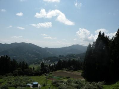 田舎 山 森 2